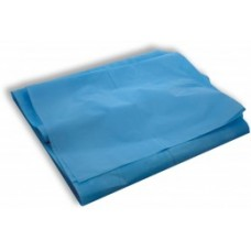 BED SHEETS, PLASTIC DRAW SHEET 915MM X 1520MM, BOX/300 (DS001)